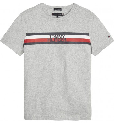 Tommy Hilfiger kids boys essential global shirt stripe tee in de kleur grijs