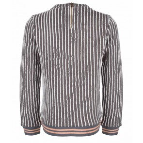 Indian blue jeans sweater trui striped crewneck in de kleur grijs