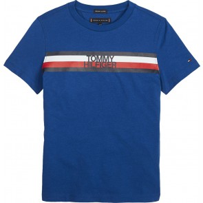 Tommy Hilfiger kids boys global stripe tee in de kleur kobalt blauw