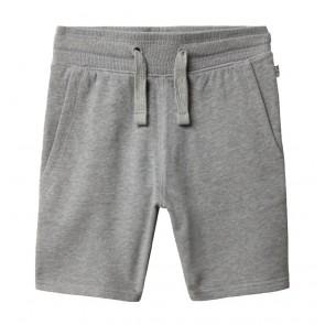Napapijri kids short sweat broek Noyie in de kleur grey melange grijs