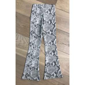 Cars Jeans flair pants broek met slangenprint in de kleur grijs