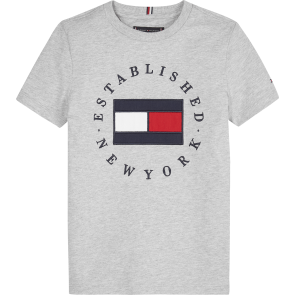 Tommy Hilfiger kids boys flag t-shirt van dik katoen in de kleur grijs