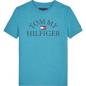 Tommy Hilfiger kids boys essential logo tee t-shirt in de kleur groen