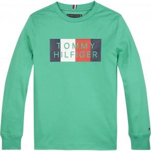 Tommy Hilfiger kids boys global stripe graphic longsleeve shirt in de kleur cosmic green groen