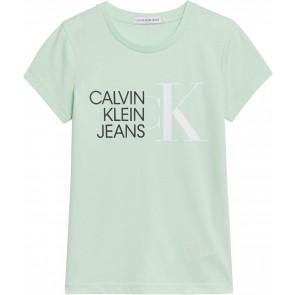 Calvin Klein kids girls hybrid logo slim t-shirt in de kleur mintgroen