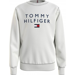 Tommy Hilfiger kids boys tommy flag crewneck sweater trui in de kleur lichtgrijs