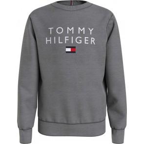 Tommy Hilfiger kids boys tommy flag crewneck sweater trui in de kleur antraciet grijs